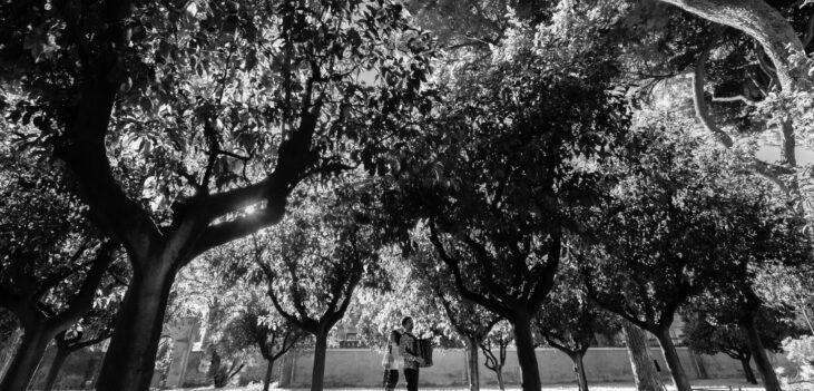 Samuele telari e alice cortegiani nel giardino degli aranci in bianco e nero